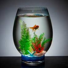 创意鱼gr水族箱圆形en鱼缸客厅(小)型恐龙蛋桌面微景观造景套餐