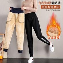 高腰加gu加厚运动裤de秋冬季休闲裤子羊羔绒外穿卫裤保暖棉裤