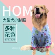 宠物狗gz服装护肘衣gs型犬秋冬季装金毛2020新式拉布拉多萨摩