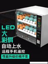 孵化机ha自动商用简ay箱3层加热器育雏可孵化照蛋灯。