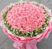66朵红粉香槟玫瑰鲜花速递hi10兴柯桥lu波资溪同城送花批发