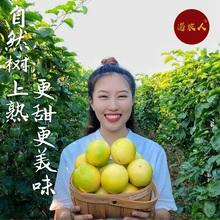 海南黄hi5斤净果一oy特别甜新鲜包邮 树上熟现摘