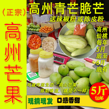 高州生芒果5斤送陈皮粉辣