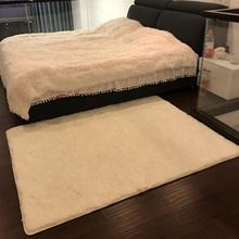 直播白hoins风客ng毛地毯卧室少女网红同式满铺床边短绒地垫