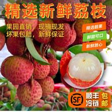 深圳南ho新鲜水果特ll罂桂味糯米糍净重3斤5斤10斤包邮