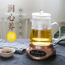 特莱雅hu用养生壶(小)an室全自动花茶煮茶器加厚玻璃电煮茶壶
