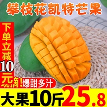 攀枝花hu特芒现摘带ou斤新鲜当季香甜多汁应当季带水果包邮