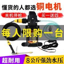 新式1huv220vmo枪家用便携洗车器电动洗车水泵刷车