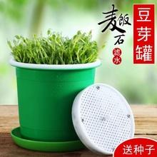 豆芽罐hx用生豆芽机ax塑料豆芽菜种植桶发绿豆黄豆全自动