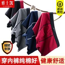 男士男il棉平角裤潮oy感青年夏季透气四角全棉大码短裤头