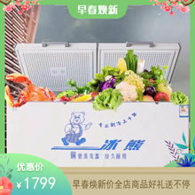 冰熊新inBC/BDer8铜管商用大容量冷冻冷藏转换单温冷柜超低温柜