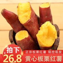 现挖板in新鲜10斤ra地农家黄心番薯烤糖心整箱包邮
