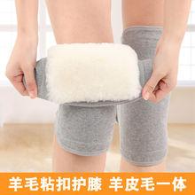 羊毛护in男女士保暖er秋冬季加厚羊绒防寒老的粘扣护膝盖保暖
