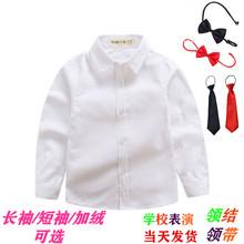 男童纯棉白衬衫长袖纯白ja8衬衣男孩ei大童节目表演出校服