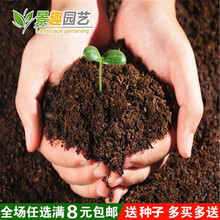 盆栽花jh植物 园艺xw料种菜绿植绿色养花土花泥