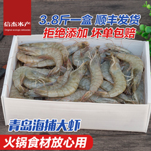 海鲜鲜ji大虾野生海an新鲜包邮青岛大虾冷冻水产大对虾