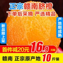 江西赣jl新鲜水果应ka10斤整箱现摘甜橙子现摘