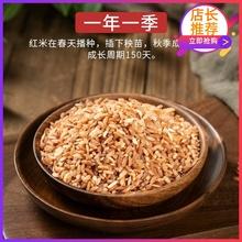 云南特ju哈尼梯田元ia米月子红米红稻米杂粮粗粮糙米500g