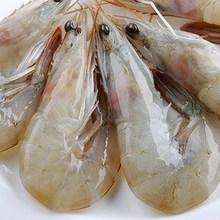大连野ju大虾13厘jj水产活虾明虾对虾海虾冰冻青虾4斤