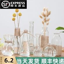 透明玻ju花瓶水培植st皿绿萝水养(小)瓶子干花插花摆件装饰花盆