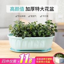 熊猫花jw长方形蔬菜io脂PP阳台种菜盆厚特大花盆托盘