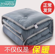 冬季被jx冬被加厚保dj全棉被褥春秋单的学生宿舍双的冬天10斤