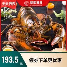 龙虾波ka顿澳洲澳龙an大波龙奥龙波斯顿海鲜水产大活虾