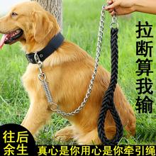 大狗狗ka引绳子防咬an金毛阿拉斯加项圈中大型犬狗绳铁链