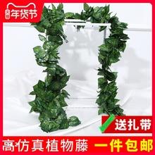 仿真葡ke叶树叶子绿in绿植物水管道缠绕假花藤条藤蔓吊顶装饰