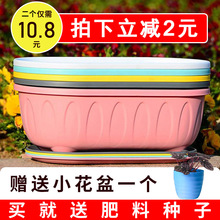 塑料多肉盆栽北ki简约特价清si形特大蔬菜绿萝种植加厚盆