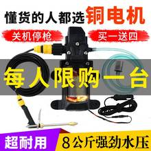 新式1kuv220vao枪家用便携洗车器电动洗车水泵刷车