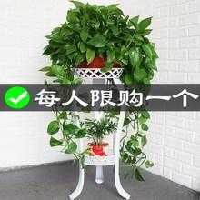花盆架lc地式花架子xs内特价省空间绿箩花架客厅阳台简约