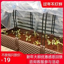 家用大le种植种菜支et花盆防雨菜苗箱防寒架耐寒多用暖房骨架