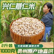 新货贵le兴仁农家特pr薏仁米1000克仁包邮薏苡仁粗粮