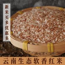 云南元lf哈尼1斤农gx食用米 五谷杂粮红大米糙米粮食