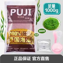 AAAlg级泰国颗粒if天然(小)颗粒美容院专用修复敏感肌肤
