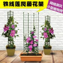 花架铁li莲架子室内li爬藤架户外攀爬杆花阳台花盆庭院支架