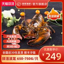 龙虾波li顿鲜活特大ur龙波斯顿海鲜水产大活虾650-750g