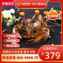 龙虾波li顿鲜活特大ur龙波斯顿海鲜水产大活虾800-900g