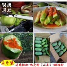 酸  li鲜包邮海南zi椒(小)象牙芒生吃现摘现发5斤