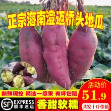 海南澄lo沙地桥头富an新鲜农家桥沙板栗薯番薯10斤包邮