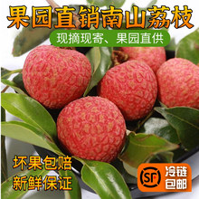 深圳南lo新鲜水果妃gi糖罂桂味糯米糍3斤5斤10斤冷链包邮