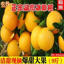 湖南冰lu橙新鲜水果bo大果应季超甜橙子湖南麻阳永兴包邮