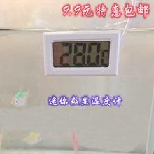 鱼缸数lu温度计水族in子温度计数显水温计冰箱龟婴儿