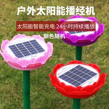 天悦名lu太阳能僧伽te歌播放器户外唱佛莲花成本价结缘