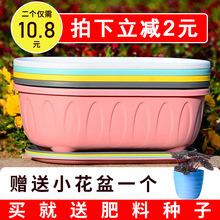 花盆塑lx多肉盆栽北pf特价清仓长方形特大蔬菜绿萝种植加厚盆