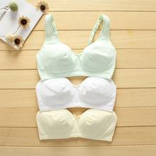 [maley]纯色纯棉少女文胸发育期高