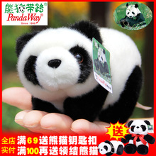 正款pandaway熊猫基地me11绒玩具ha真儿童女生出国生日礼物