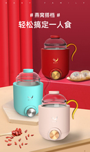 BAFmeY迷你多功al量空气炖燕窝壶全自动电煮茶壶