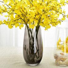 恐龙蛋mi型花器 欧he玻璃花瓶 插花透明 客厅餐桌工艺品摆件